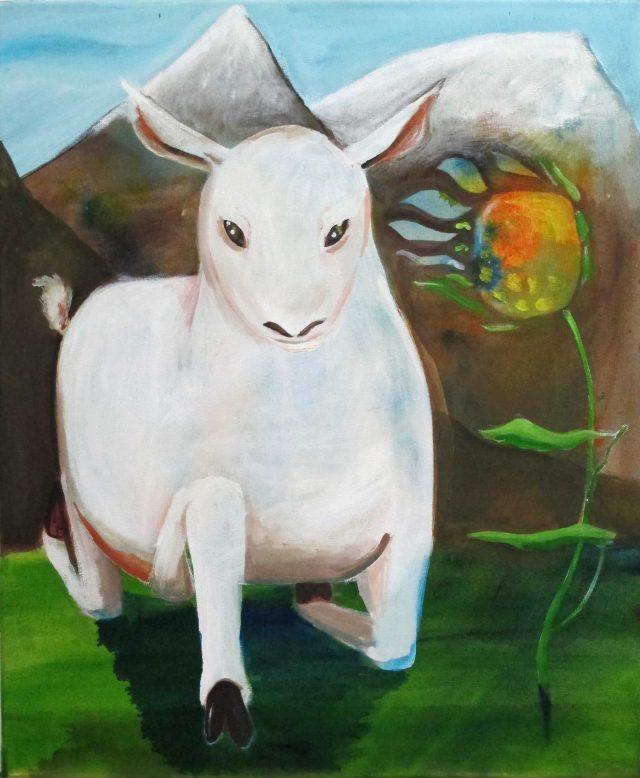 Lamb Bild